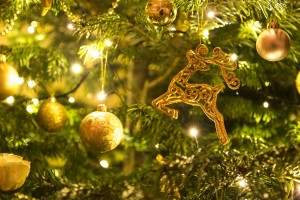 holiday events in nsb